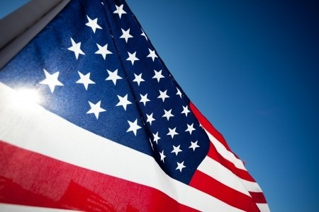 14569215 - large group of american flags commemorating a national holiday, veterans day, independence day, 9 11, etc